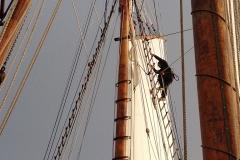 scouts marins dans les voiles