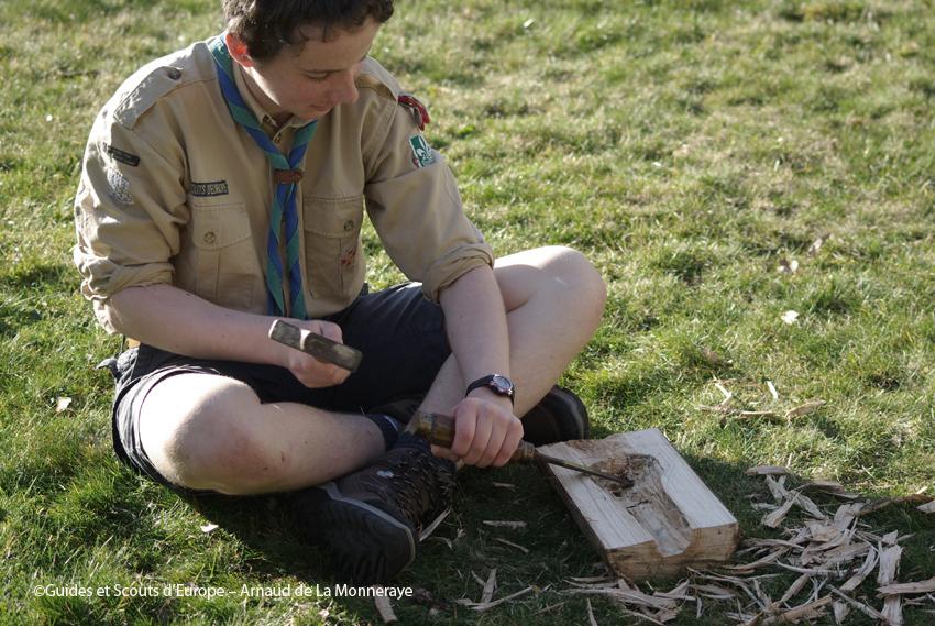 scout nichoir